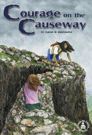 Courage on the Causeway (Cover-to-Cover Novels: Adventure) by Sarah B. Beurskens