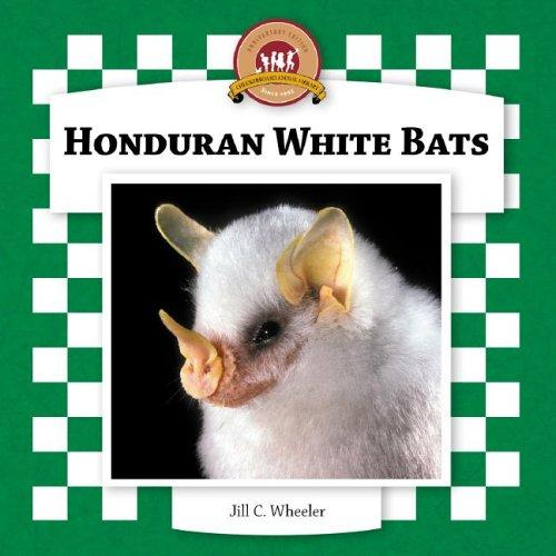Honduran White Bats (Bats Set II) by Jill C. Wheeler